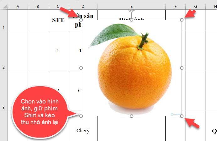 chỉnh ảnh vừa ô trong Excel