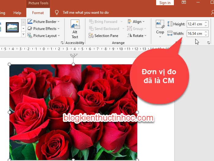 đổi in sang cm trong powerpoint